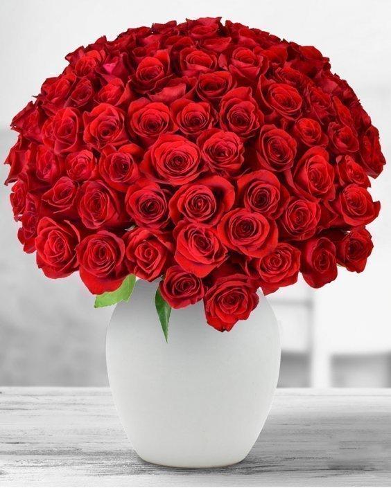 Red Queen – Букет от 59 рози