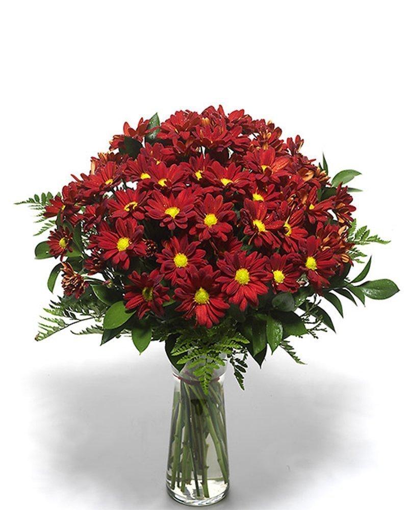 7 хризантеми