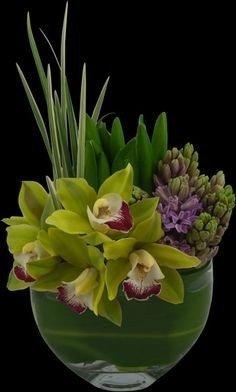 Орхидейн и зюмбюл