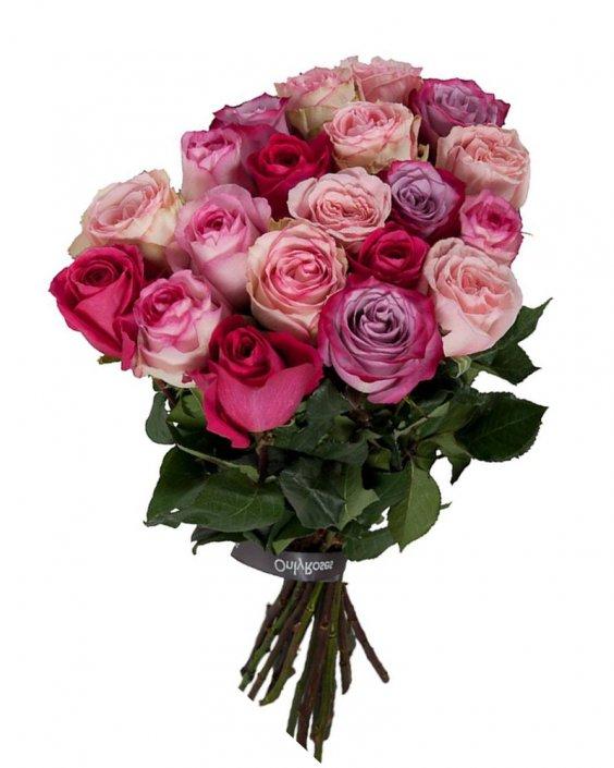 Roses Magic