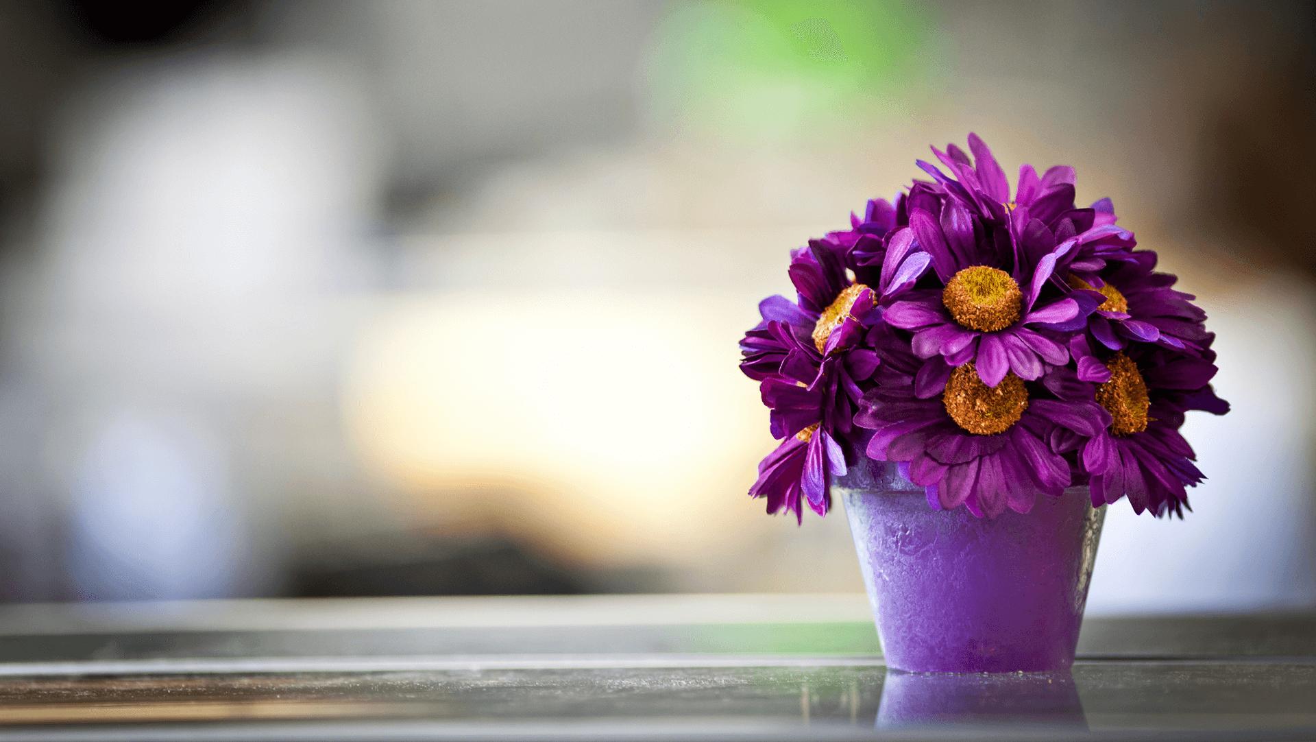 Нов слайд 31.07 - Доставка на цветя Бутик Лилия