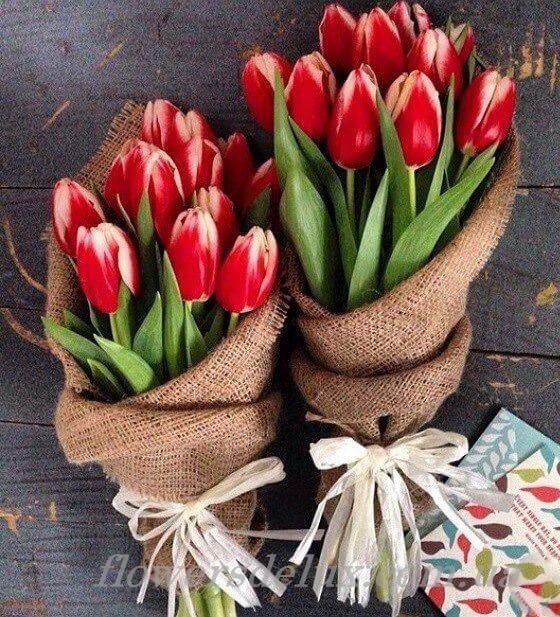 11 лалета в зебло - Магазин за цветя Butiklilia