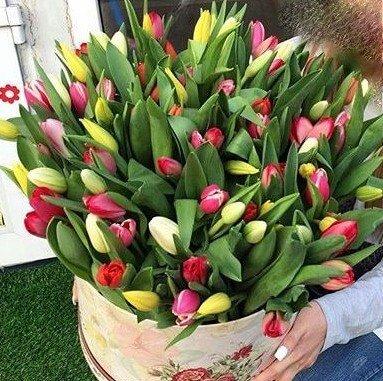 51 лалета в кутия - Доставка на цветя Butiklilia