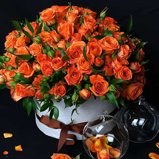 Спрей роза в кутия