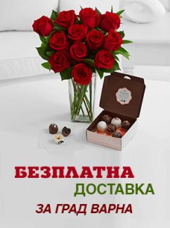 Безплатна доставка за град Варна