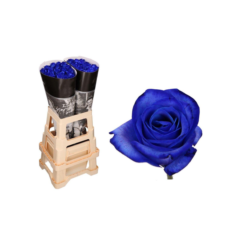 Букет от 9 броя сини рози